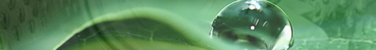 wet_clean_Capersan